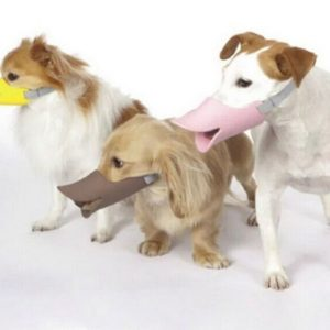 Намордник для собаки