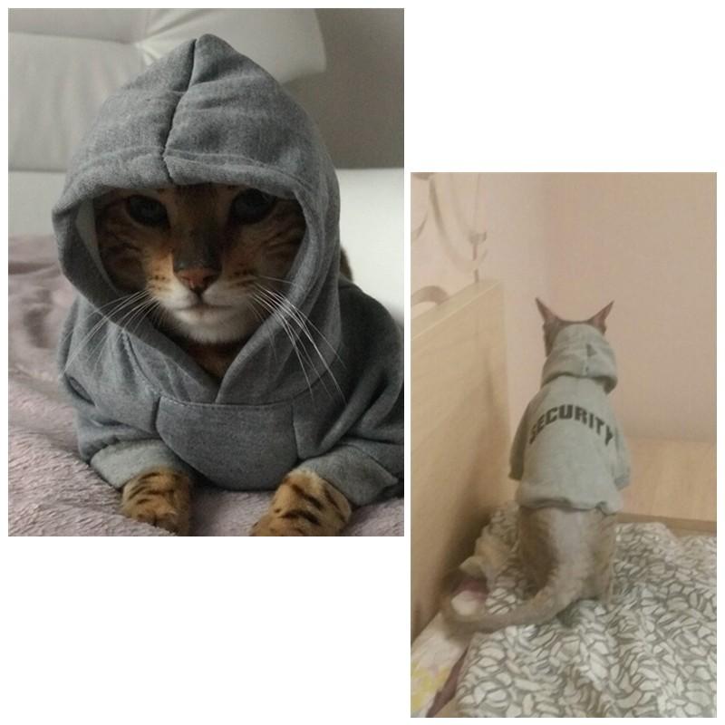 толстовка для кота ганста стиль
