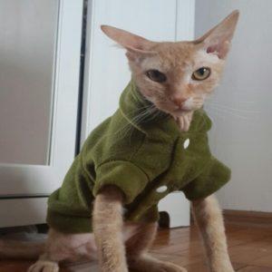 Зеленая флисовая толстовка для кота с капюшоном