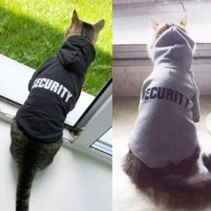 Hoodie толстовка для кота или собаки