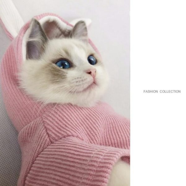 Кофта для кошки с капюшоном