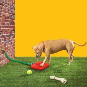 Поилка Для Собаки с Педалью