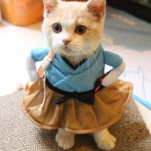 костюм для кошки