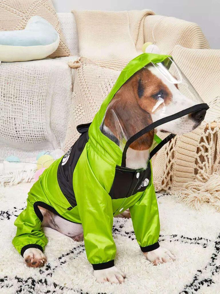 дождевик для собаки